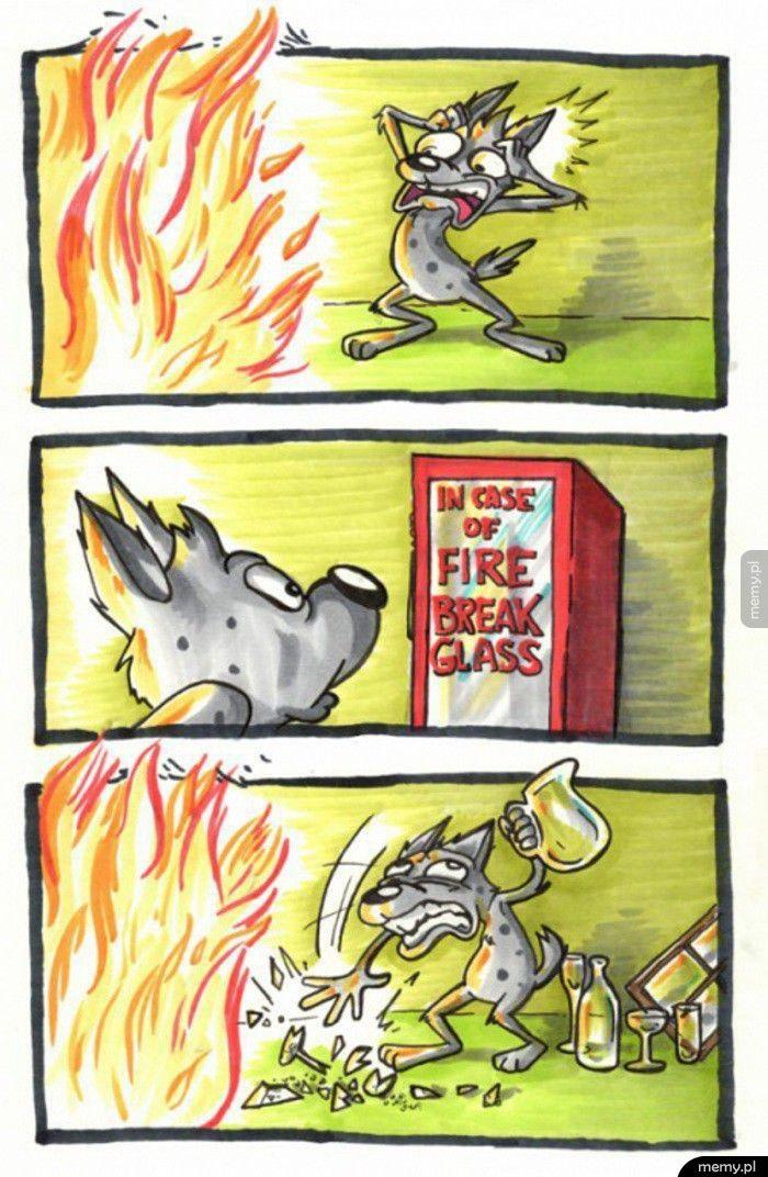 W razie pożaru