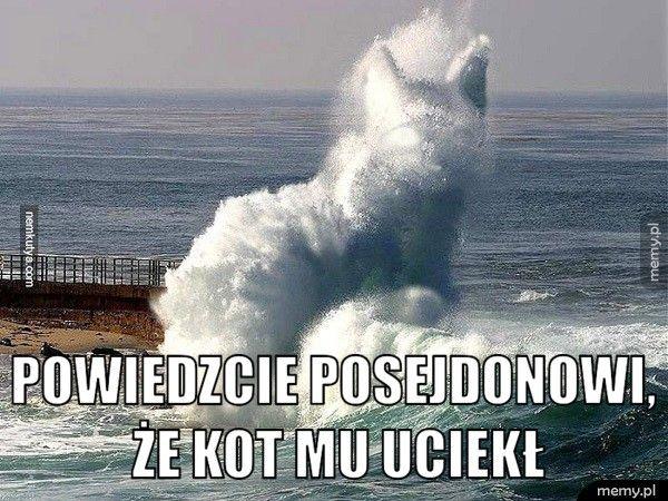 Powiedzcie Posejdonowi, że kot mu uciekł