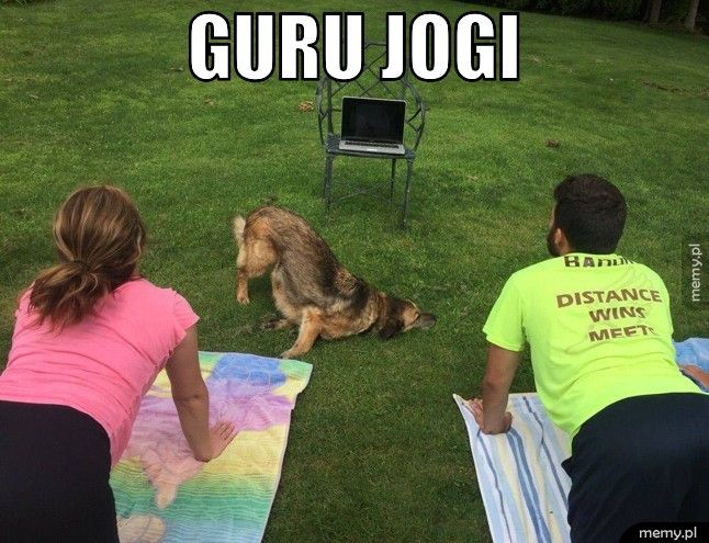 Guru jogi.