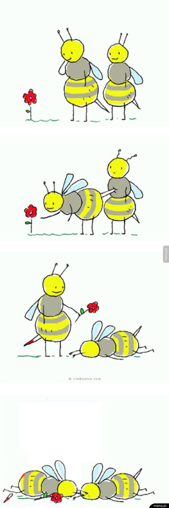 Problemy pszczół