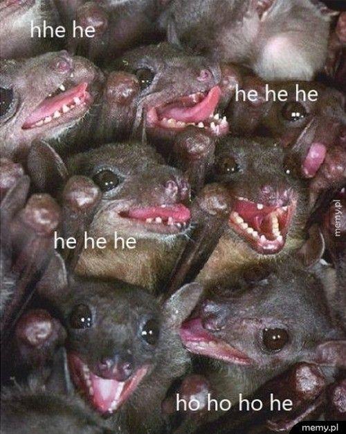 He he he