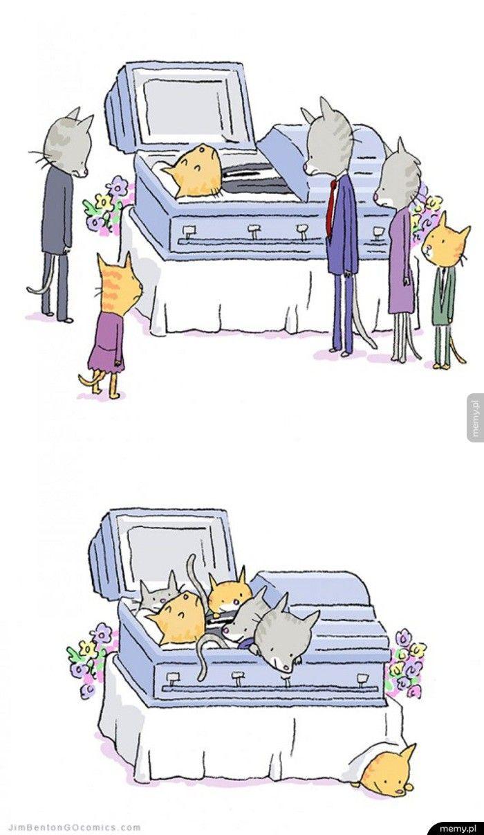 Koci pogrzeb