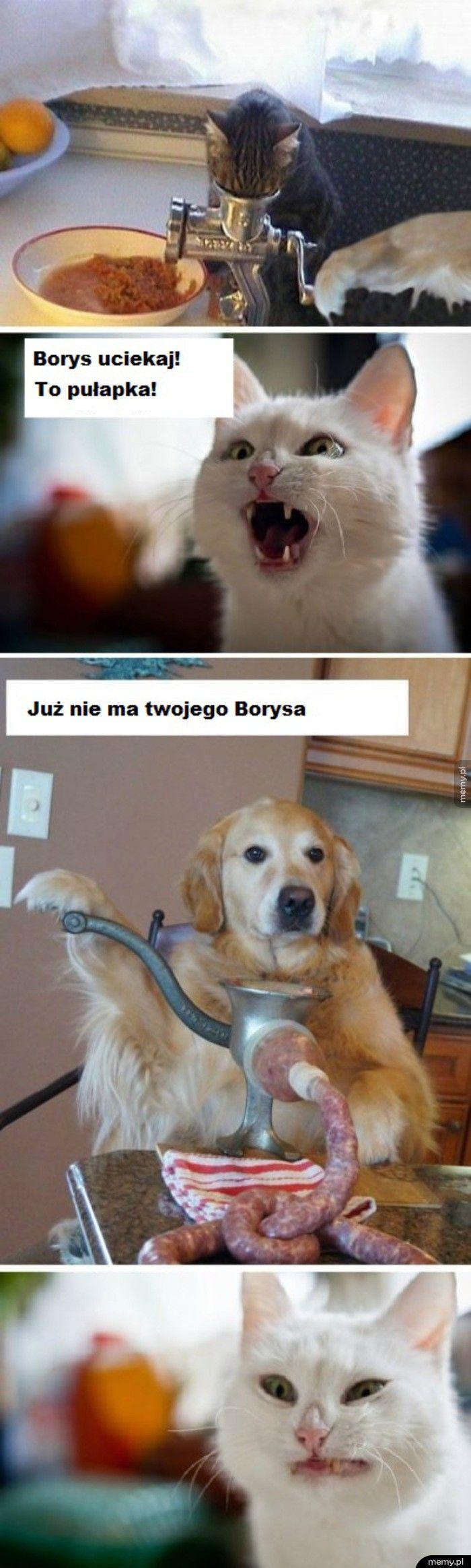 Biedny Borys