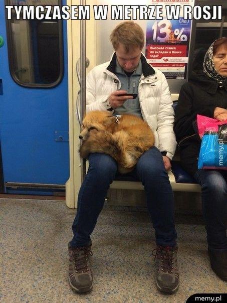 Tymczasem w metrze w Rosji