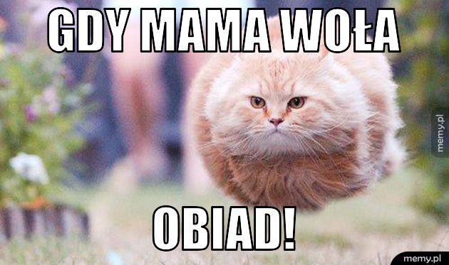 Gdy mama woła Obiad!