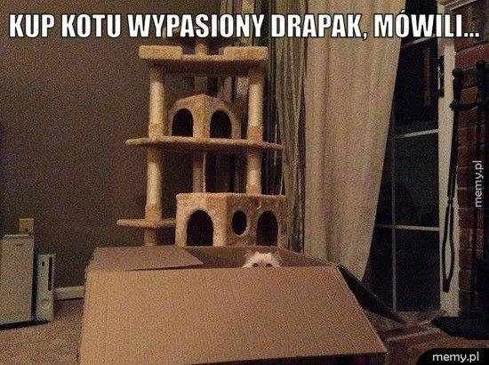 Kup kotu wypasiony drapak, mówili...