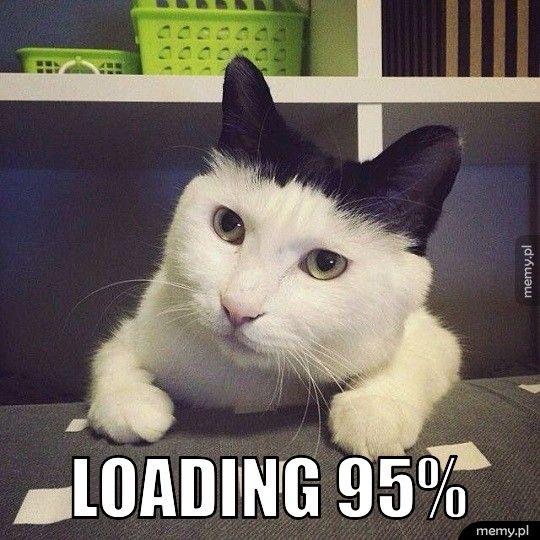 Loading 95%