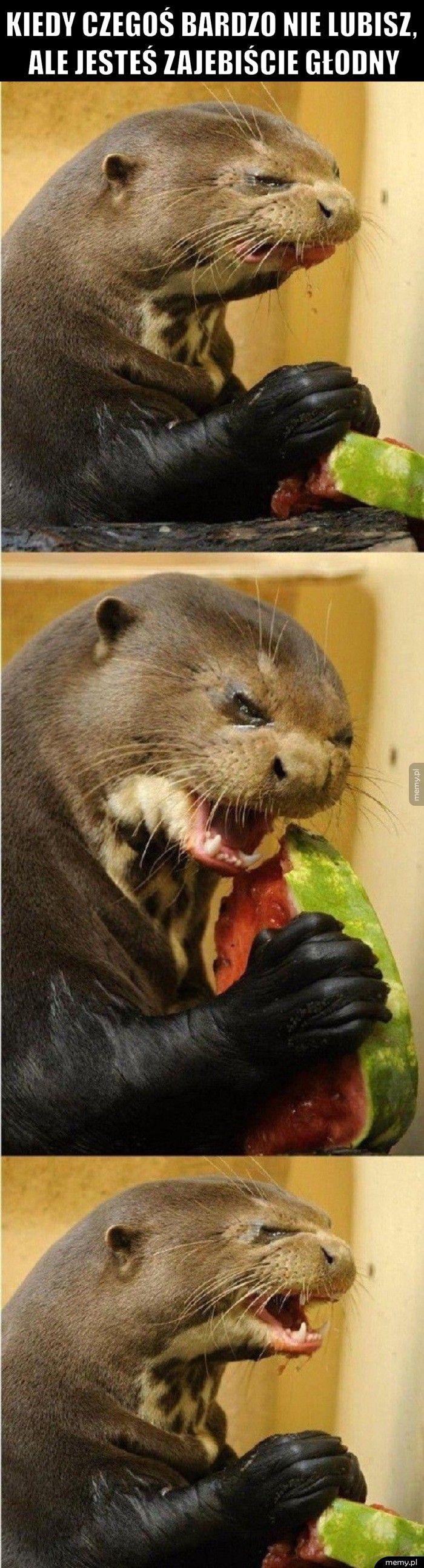 Kiedy czegoś bardzo nie lubisz, ale jesteś zajebiście głodny