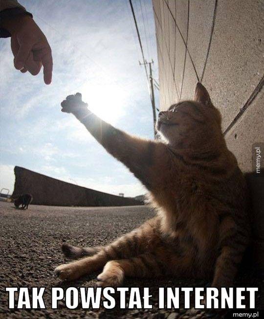 Tak powstał internet