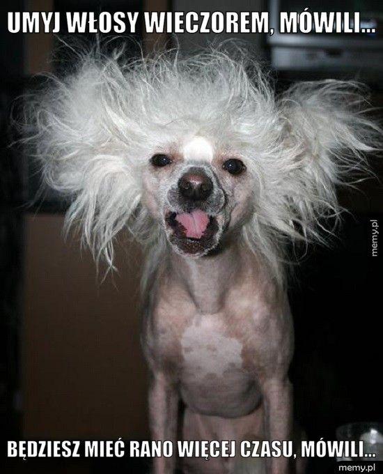 Umyj włosy wieczorem, mówili... Będziesz mieć rano więcej czasu, mówili...
