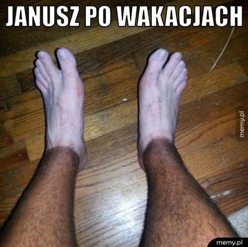 Janusz po wakacjach