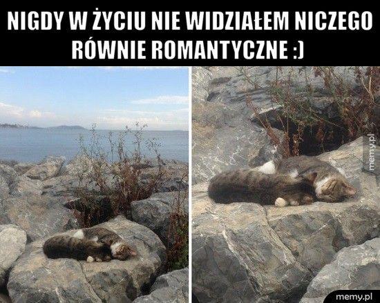 Nigdy w życiu nie widziałem niczego równie romantyczne :)