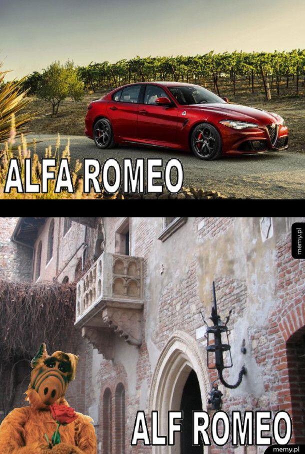 Alf Romeo