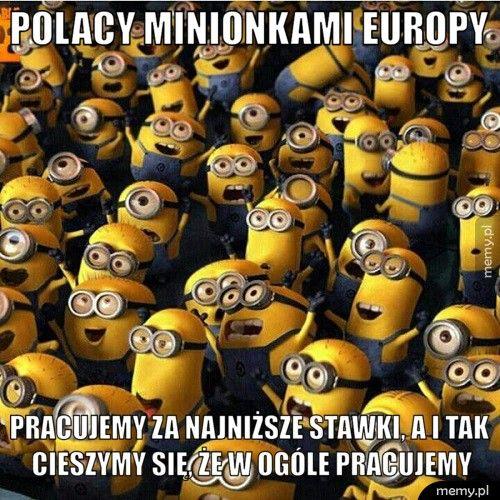 Polacy Minionkami Europy Pracujemy za najniższe stawki, a i tak cieszymy się, że w ogóle