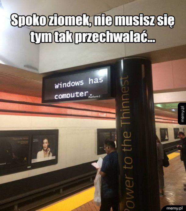 Windows przejmuje władzę