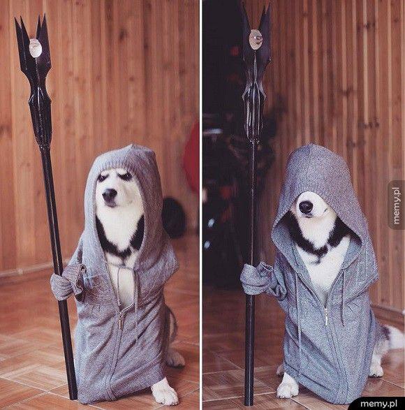 Saruman Biały