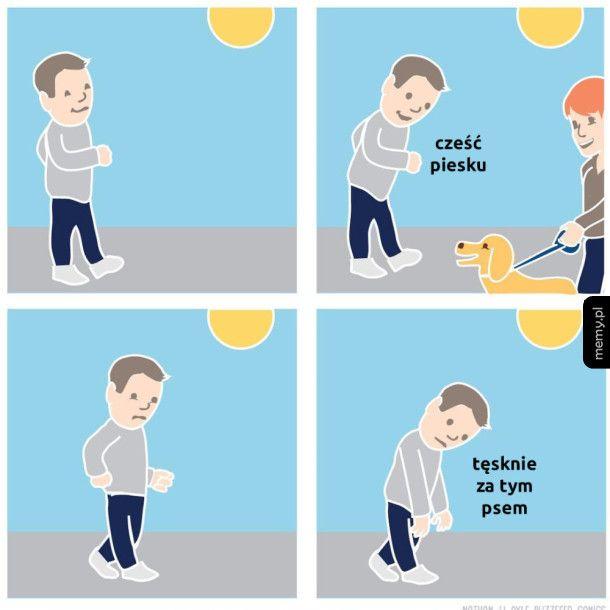 Ludzie, którzy kochają zwierzęta