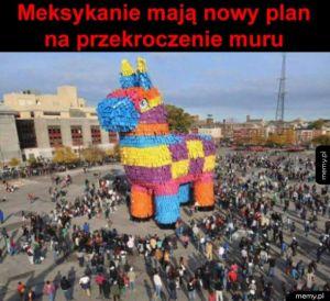 Mają plan