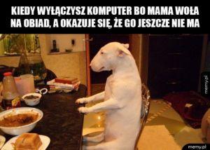 Mamo dzięki za obiad