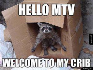 Hello MTV