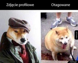 Zdjęcie profilowe vs otagowane