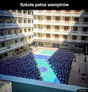 Wampir school musical
