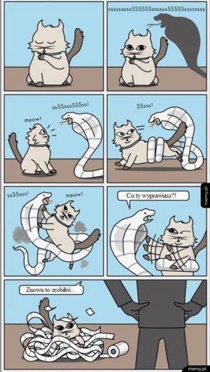 Walka z wężem