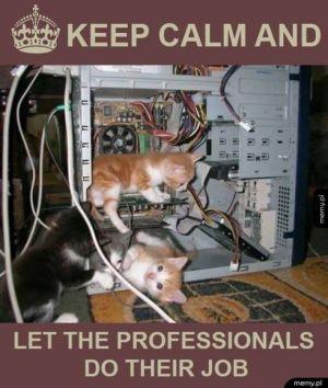 Najsłodsze wsparcie techniczne na świecie!