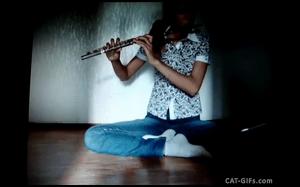 Koteł nie lubi gry na flecie