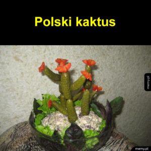 Polski kaktus