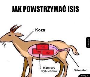 Jak powstrzymać ISIS