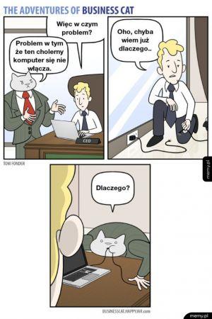 Przygody kota biznesmena
