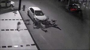 Psy naprawiają auto