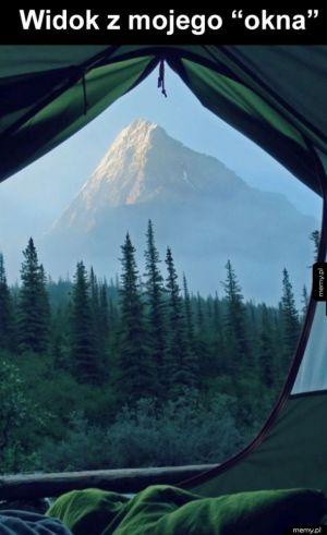 Mógłbym tu zostać