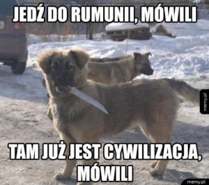 Jedź do Rumunii