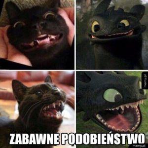 Zabawne podobieństwo