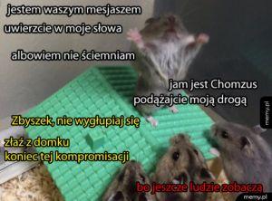 Chomik mesjasz