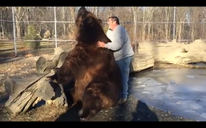 Największy pies jakiego widziałem