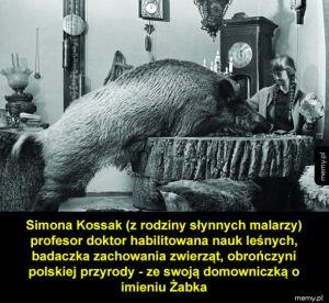 Simona Kossak