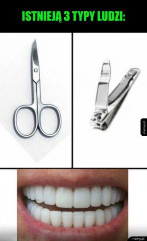 3 typy