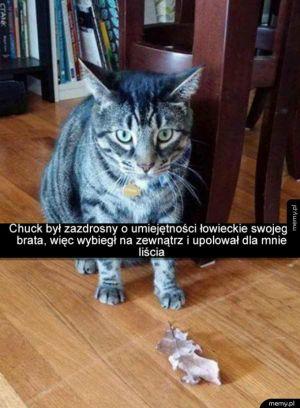 Piękny prezent, dziękuję pan koteł