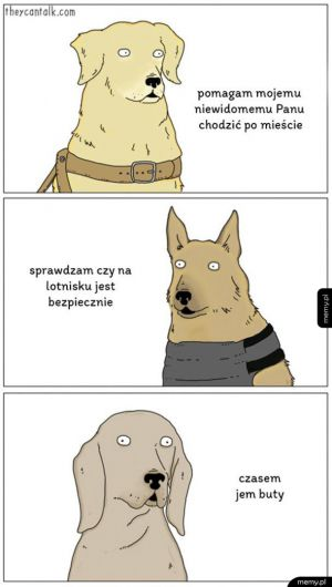 Psy opowiadają o sobie