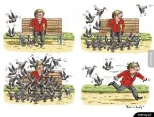 Merkel vs Imigranci. Idealne podsumowanie: