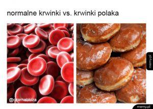 Krwinki