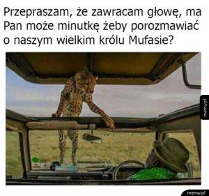 Wysłannik Mufasy