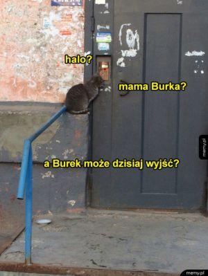 Mama burka