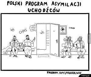 Program asymilacji