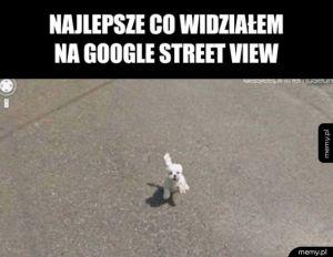 Najlepsze co widziałem na Google Street View