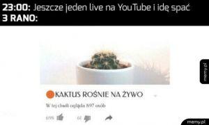 Live na youtube