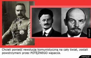 P O T Ę Ż N Y  W Ą S A C Z